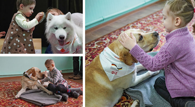Top left: Four-year-old Alina with her new friend Hillary. Alexey Birintsev thought it would be a good idea to train his dog to help young children with their therapy. As the session with Miroslav shows, the results can be quite astonishing. Right: The mutual devotion between six-year-old Arina and the labrador Crass at the therapy session is plain for all to see.