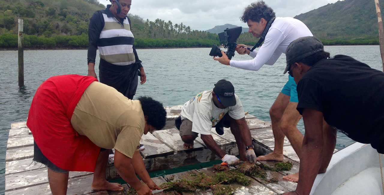 The island Republic of Fiji aims to grant special protection status to almost a third of its marine areas by 2020. Activities in this field include sustainable fishery and shellfish farming.