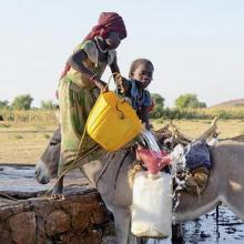 A family in Chad doing farm work.